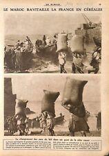 Maroc Ravitaillement Sacs de Blé Céréales pour la France  WWI 1917 ILLUSTRATION