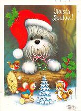 B98565 iloista ioulua  Christmas dog chien mistletoe finland animals animaux