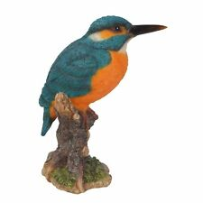 Kingfisher on a Stump, Wild Bird Collection by Vivid Arts