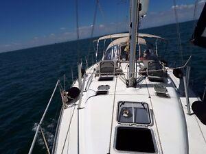 mitsegeln in Kroatien -- Kojencharter Sun Odyssey 43 Urlaub