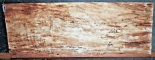 Spalted Curly Maple Wood #8381 Luthier 5A Guitar Billet 25+ x 10 x 3.5