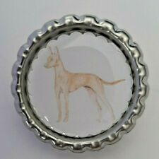 Head Golden Retriever Dog Show Ring Number Clip Pin Breed