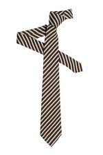 Ermenegildo Zegna Brown 100% Silk Neck Tie