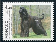 STAMP / TIMBRE DE MONACO  N° 2079 ** FAUNE / CHIEN / AFGH HOUND