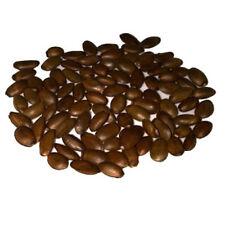 Semillas de Guanabana - Graviola (10 semillas)