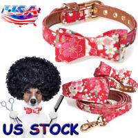 US Dog Puppy Bowknot Leather Studded Set Collar & Lead Small Medium Size Pet Cat