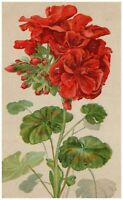 Red Embossed Flowers Early Victorian Postcard Undivided Back Germany Unposted