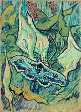Emperor Moth by Vincent van Gogh A1+ High Quality Art Print