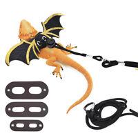 3 Size Reptile Leash Lizard Gecko Bearded Dragon Pet Walking Harness Leash Strap