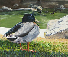 Small Oil Painting Ducks Birds Wildlife Pond California Landscape Forest Trees