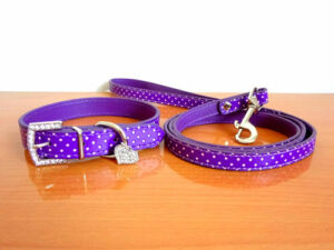 Polka Dot Bling Rhinestone Heart Leather Pet Cat Dog Puppy Collar + Leash set