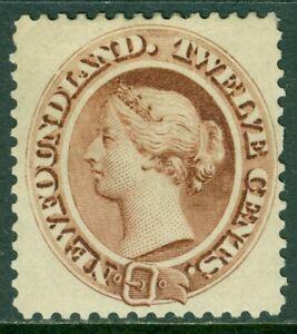 EDW1949SELL : NEWFOUNDLAND 1894 Scott #29 Very Fine, Mint Original Gum. Cat $70.