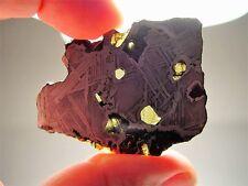 OUTSTANDING OLIVINE! SIMPLY THE BEST! GLORIETA MTNS PALLASITE METEORITE 25.3 GMS