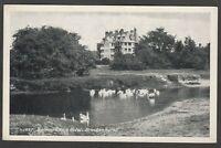 Postcard Brockenhurst nr Lymington New Forest Hampshire the Balmer Lawn Hotel