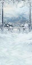 Frozen Balcony 10'x20' CP Backdrop Computer printed Scenic Background L-890