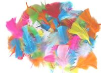 250 Approx Pack Of Many Beautiful Fluffy Craft Feathers Assorted Colours hat Fly
