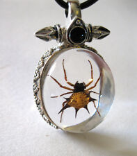 Real Spider Insect Cross Glass Goth Necklace & Pendant Strange Gift Steampunk