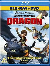 How to Train Your Dragon 2 (Dvd only)