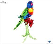 Swarovski Crystal Rainbow Lorikeet Parrot 5136832