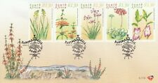 South Africa Medical Plant 2000 Flower Flora (stamp FDC B)