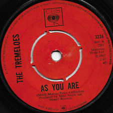THE TREMELOES - SUDDENLY YOU LOVE ME -AS YOU ARE - ORIGINAL 60s/70s MOD BEAT POP