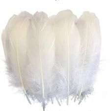 Sowder Natural Goose Feathers Clothing Accessories Pack of 100 White -b1