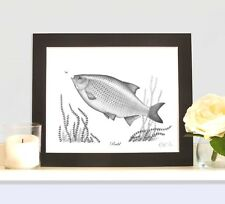 RUDD Limited Edition Fish Picture Print Fishing Gift Collectable
