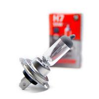 H7 Poires Voiture Véhicule Lampe Halogène PX26d 55 Watt Blanc 12V 2 Pièce