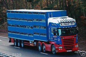Truck Photo: MacTaggart Bros - Scania R580 - SL64 LZC - Livestock Haulage SCOT