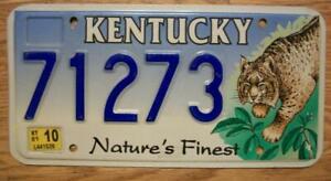 SINGLE KENTUCKY LICENSE PLATE - 71273 - NATURE'S FINEST - BOBCAT