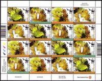 New Zealand Birds WWF Kakapo Sheetlet of 4 sets MNH SG#2811-2814 MI#2276-2279