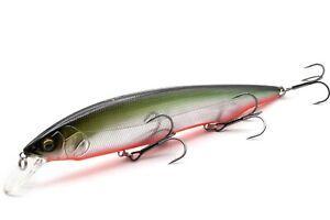 fishing lure MEGABASS KANATA AYU 160F / M RB SHAD