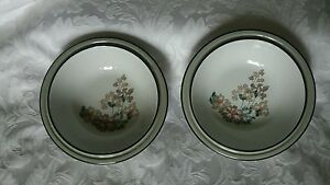 Denby Romance (2 Small fruit/dessert bowls) 6.5 inches