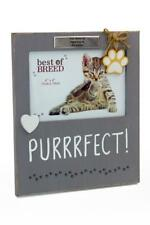Personalised Purrrfect Cat Vintage Style Photo Frame Gift BB324-P