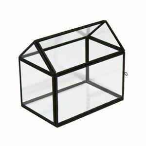 Terrarium Bloom Noir House plant succulant glass house - 7820