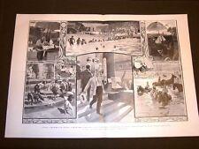 Caldo a Milano 1905 + La Vecchia di Richard Miller + Camozzi + Artom + Arisugawa