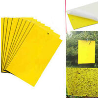 100pcs Dual-Sided Sticky Fly Paper Yellow Traps Fruit Flies Insect Glue Catcher