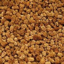 (€12,74/kg) 1kg Maulbeeren getrocknet, ungeschwefelt,Trockenfrüchte ohne Zucker