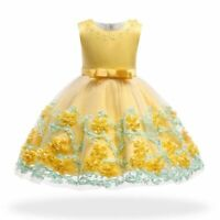 Dresses baby girl princess dress flower formal kid tutu bridesmaid party wedding