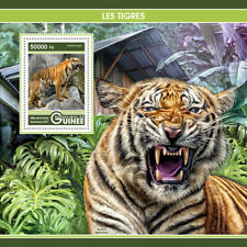 Guinea 2017 MNH Tigers 1v S/S Big Cats Wild Animals Stamps