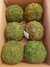 Moss Balls preserved Set of 6, 6 inch Moss pomander balls home decor