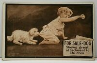 Child And Naughty Dog by A.E. Hayden 1910 Douglas North Dakota Postcard D17