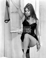 "SOPHIA LOREN IN ITALIAN FILM ""YESTERDAY, TODAY AND TOMORROW"" 8X10 PHOTO (FB-946)"