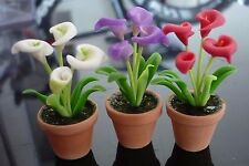 3 Calla Arum Lily  Flower Plant in Terracotta Pot Dollhouse Miniatures Garden