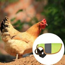 Pet Reflective Vest Clothes Poultry Hen Saddle Protection Holder For Chicken