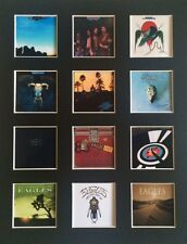 """THE EAGLES DISCOGRAPHY 14"""" BY 11"""" LP COVERS PICTURE MOUNTED READY TO FRAME"""
