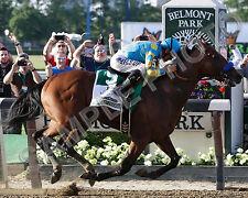 AMERICAN PHAROAH 2015 BELMONT STAKES TRIPLE CROWN WINNER HORSE 8X10 PHOTO #2