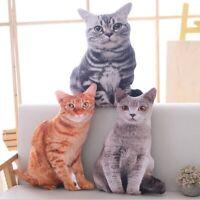 3D Simulation Cat Pillow Cat Doll Cushion Throw Pillow Plush Toy Sofa Decor 50CM
