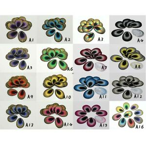 20-100X Peacock Eyes Motif Embroidered Cloth Iron Sew On Patchesn Applique Badge