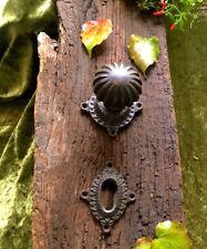 Türknauf für Tür, mit gründerzeitlicher Schloss-Rosette top